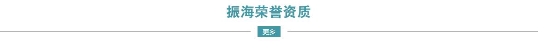 济南保安公司振海荣誉资质